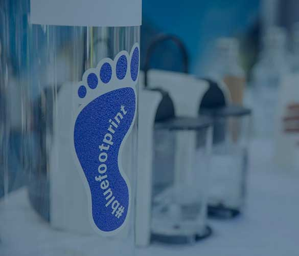#bluefootprint